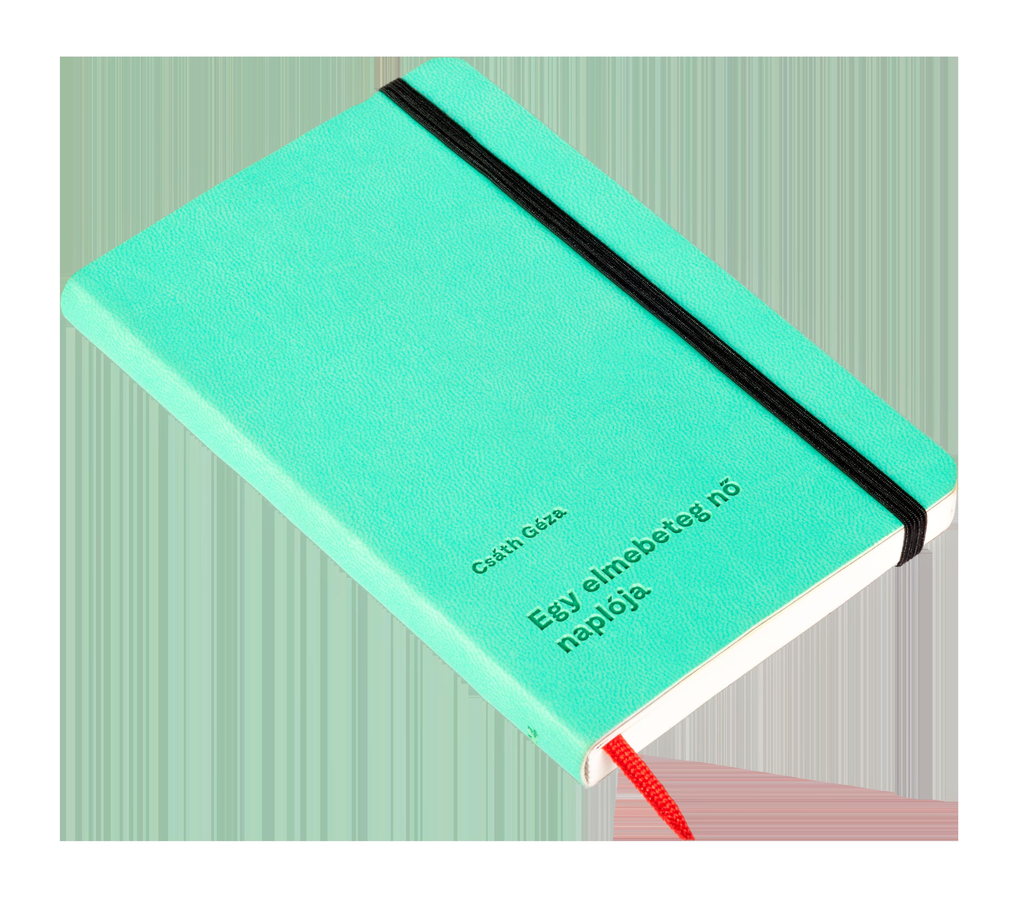 Egy elmebeteg nő naplója