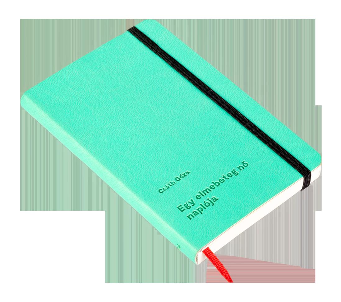 4 - Egy elmebeteg nő naplója